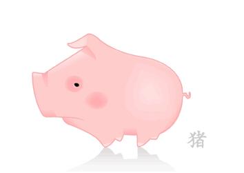 属猪人2015年运势