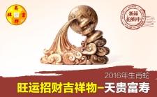 属蛇人2016吉祥物-天贵富寿