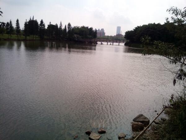 李东明老师南方都市报开讲风水兴趣班